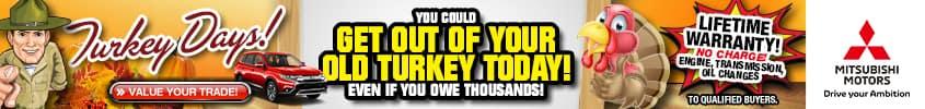 AppleMitsu_Turkey_845X100_103019