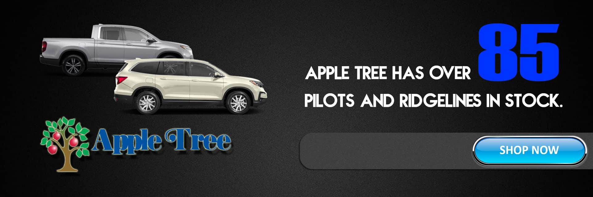 Apple Tree Honda New And Used Honda Dealer In Fletcher Nc