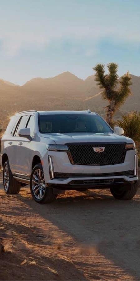 White Cadillac Escalade in a desert