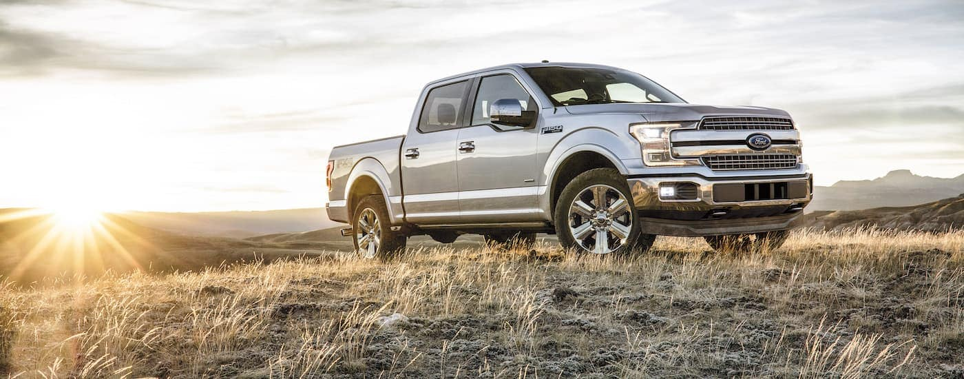 A silver 2018 Ford F-150 is parked in a field.