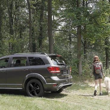 2018 Dodge Journey Forest
