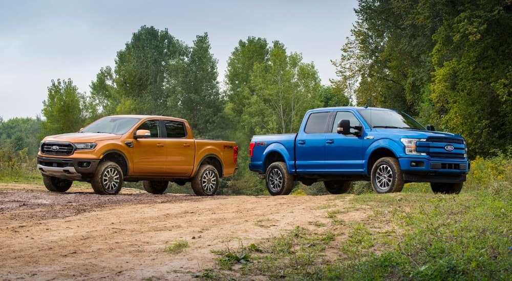 One orange and one blue 2019 Ford F-150 parked on dirt surrounded by grass and trees