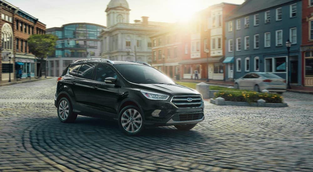 A black used 2019 Ford Escape is parked on a cobblestone cul-de-sac.