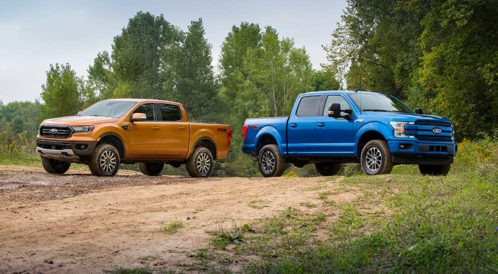An orange 2019 Ford Ranger is angled left next to a blue 2019 Ford F-150 that is angled right, both on a dirt trail.