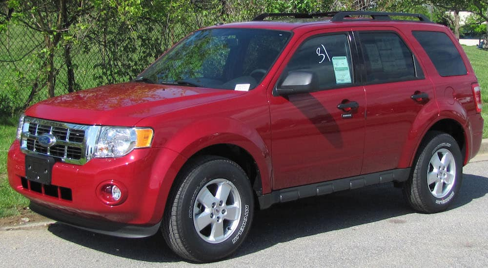 Used Red 2010 Ford Escape XLT in front of fence and vines