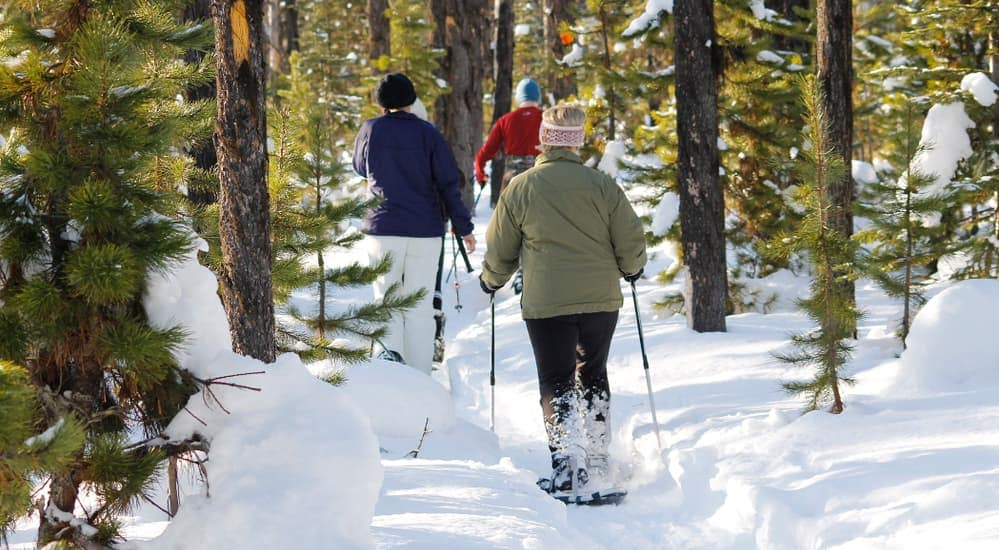 A family is walking through the woods in snow shoes.