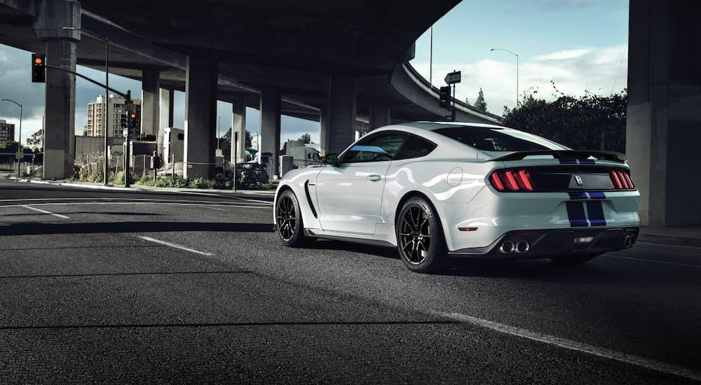 A white 2020 Ford Mustang GT350, a popular performance car at Ford dealership locations in Albany, NY, is stopped at a red light.