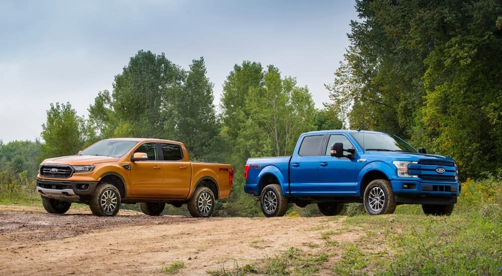 An orange 2019 Ford Ranger and a blue 2019 Ford F-150, which are popular among used Ford Trucks, are parked on a dirt trail.