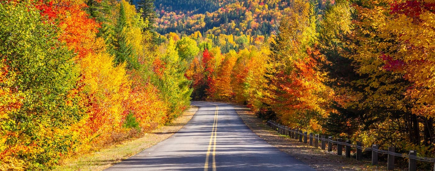 A scenic view of a road of colorful fall trees near Poughkeepsie, NY.