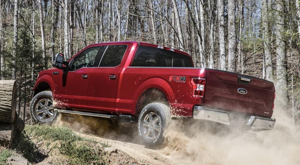 A red 2020 Ford F-150, popular among Ford trucks for sale, is driving up a dirt road in the woods near Albany, NY.