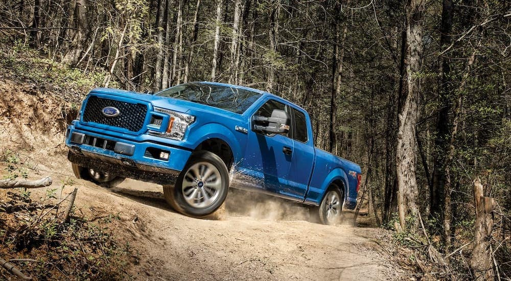 A blue 2019 Ford F-150 STX is driving through a dirt trail in the woods outside Albany, NY.