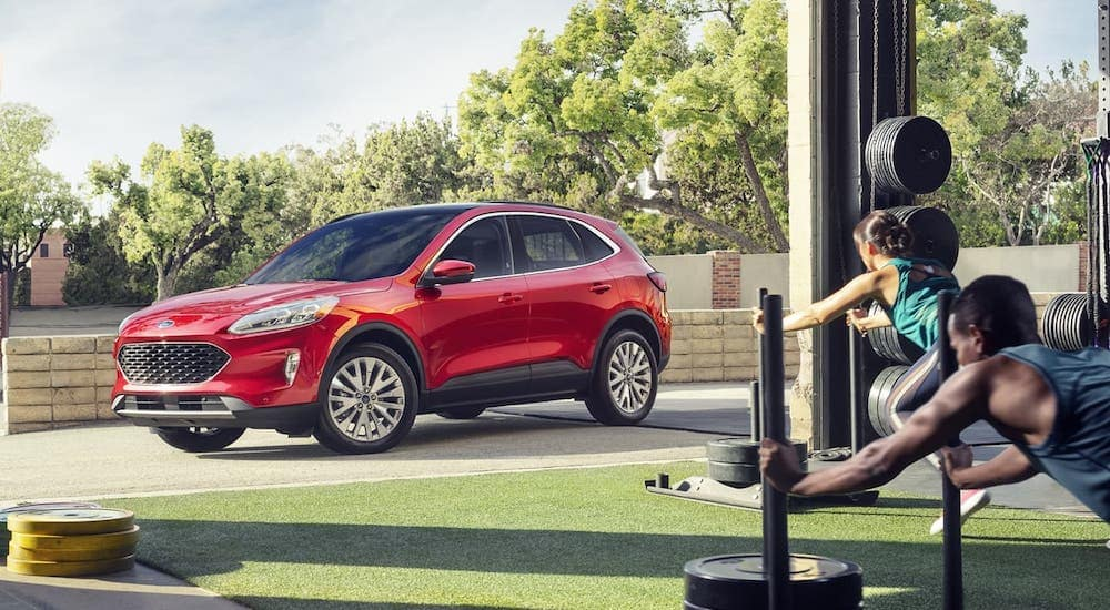 A red 2020 Ford Escape Titanium is parked outside people working out in a gym near Albany.