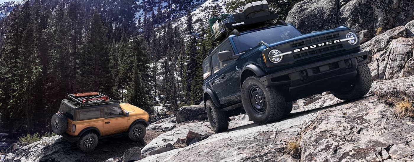 A blue 2021 Ford Bronco 4-door and an orange 2-door are climbing a mountain near Albany, NY.