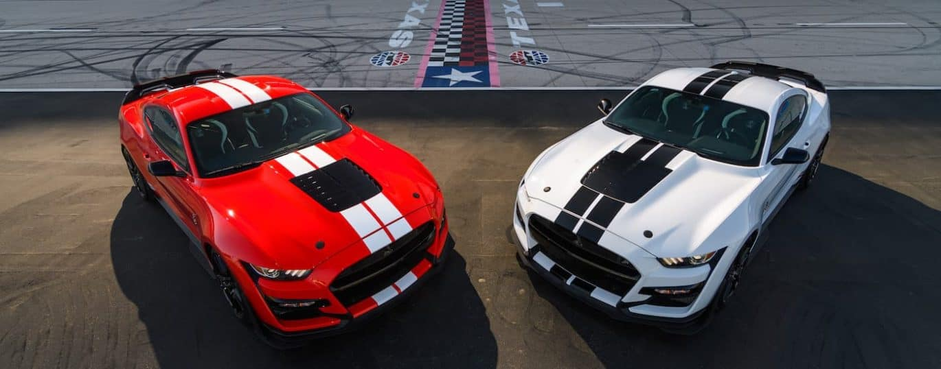 A red and a white 2021 Ford Mustang Shelby GT500 are shown angled toward each other parked at a racetrack.