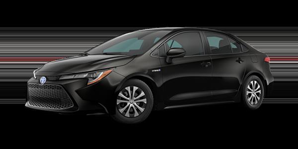 Corolla Hybrid Rental