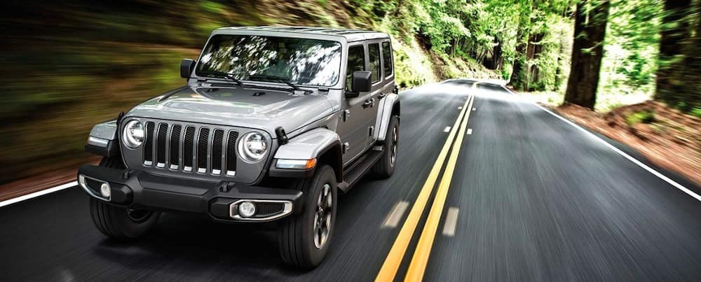 2019 Jeep Wrangler in silver in the woods