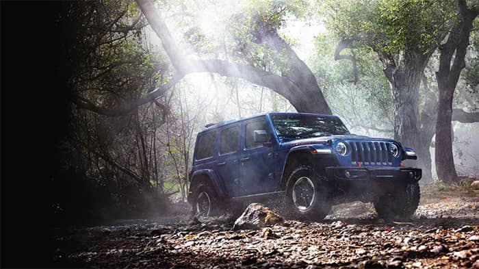 Jeep Wrangler Driving in Forest