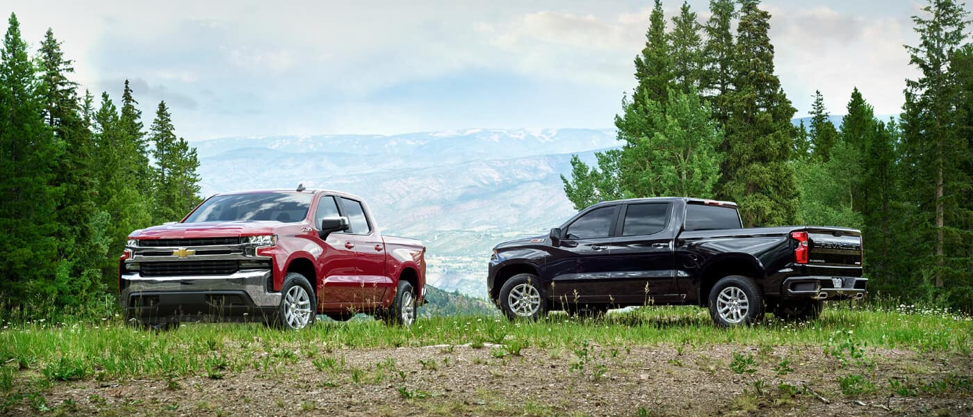 Two 2020 Chevy Silverado 1500s on a hill in the forest