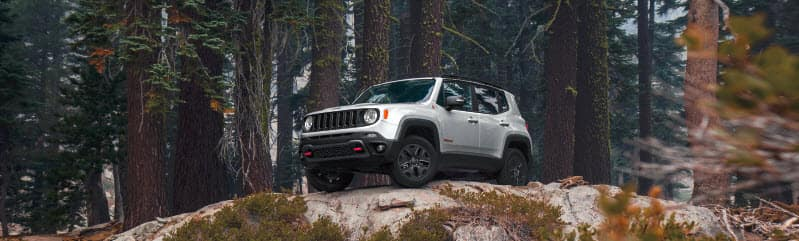 Jeep Renegade Dashboard Light Meanings | Americanwarmoms.org