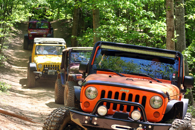 Beasley Knob OHV Trail System