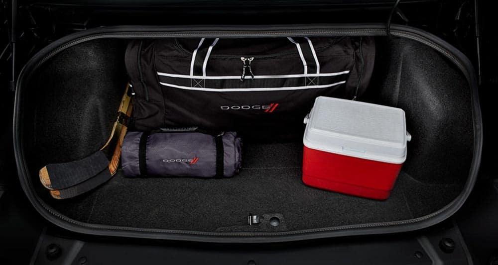 2018 Dodge Challenger Storage