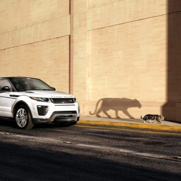 2017 Range Rover Evoque Shadow