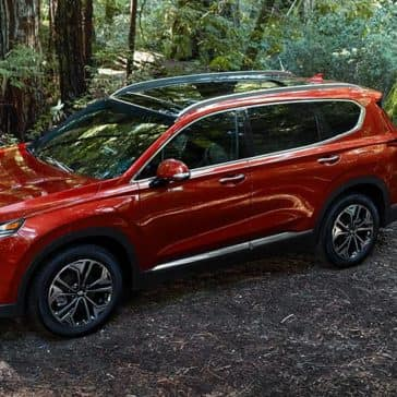 2020 Hyundai Santa Fe In The Forest
