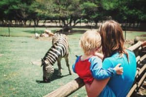 Guide to the Lincoln Park Zoo Fall Fest