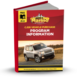 Vehicle Purchase Program Info
