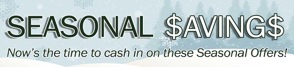 Seasonal Savings Banner
