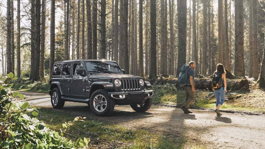2020 Jeep Wrangler In Forest