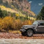 2018 Jeep Wrangler Driving In Nature
