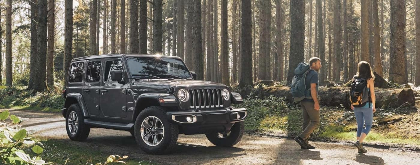 Black 2020 Jeep Wrangler in the woods