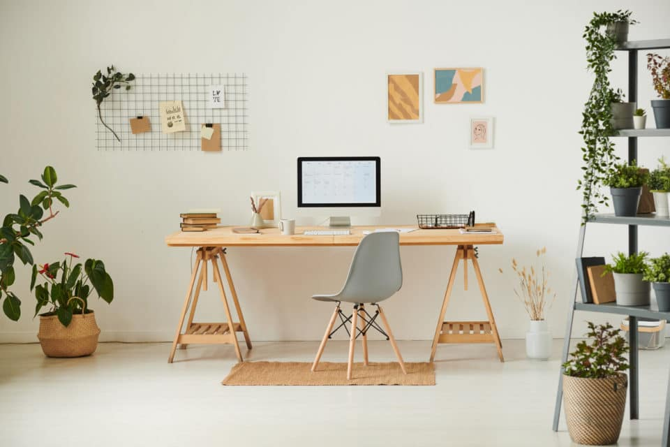 Comfortable workplace with potted plants and a modern wood desk.