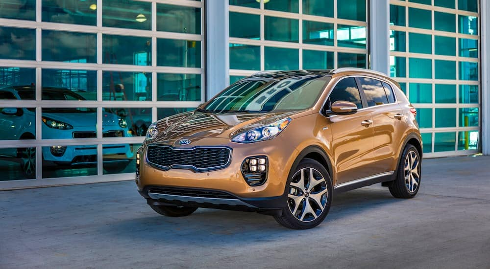 A gold colored 2019 Kia Sportage is in front of windows at one of the Kia dealership locations in NJ.