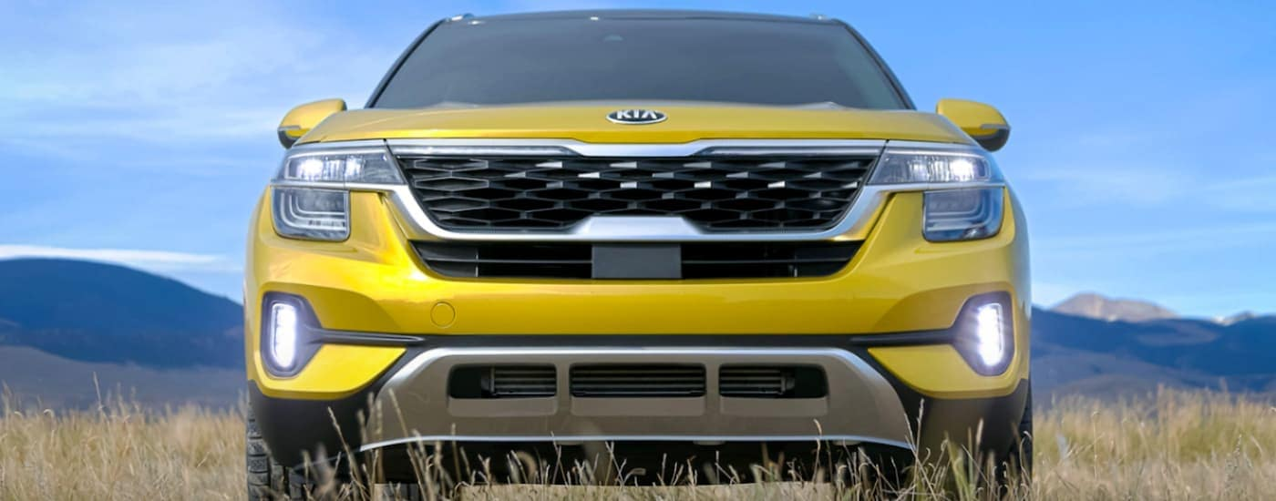 A yellow 2021 Kia Seltos, one of the upcoming Kia SUVs, is shown from the front in a field.