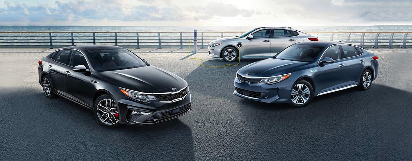 Three of the available Kia car models available for the Optima, a black, a blue, and a silver 2020 Kia Optima are parked on a pier near Freehold, NJ.