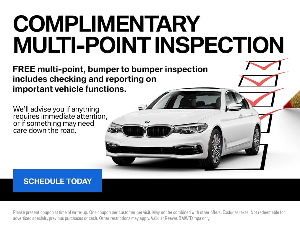 BMW Multipoint Inspection