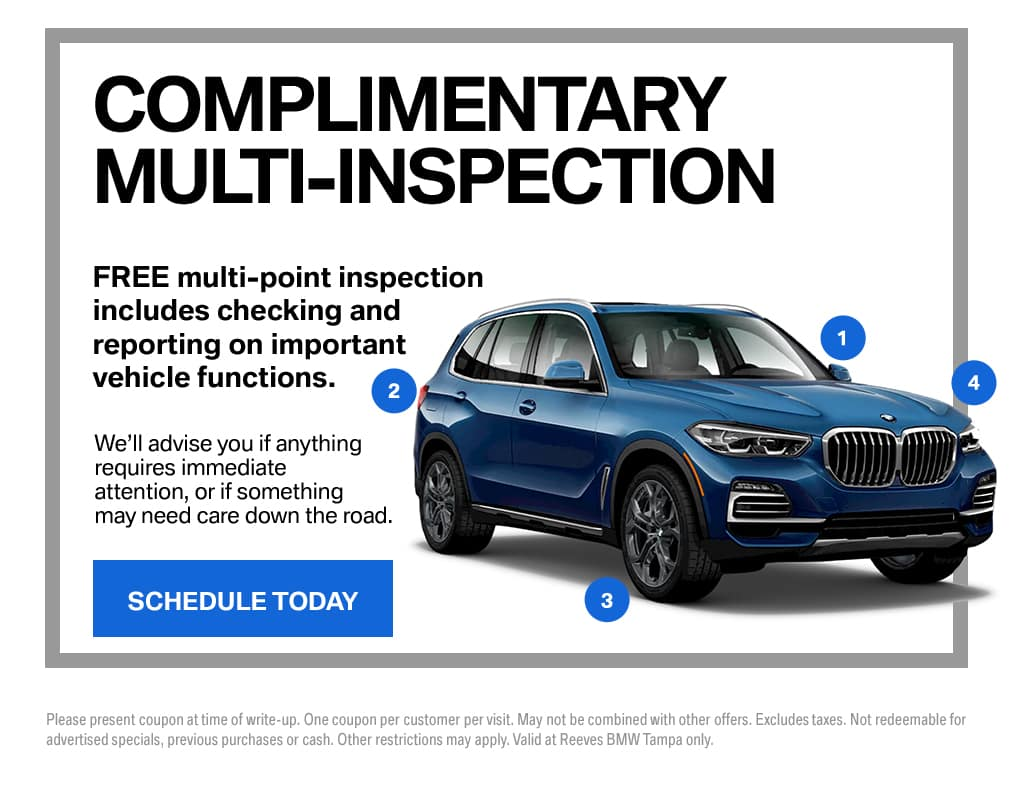 BMW Multi-Point Inspection