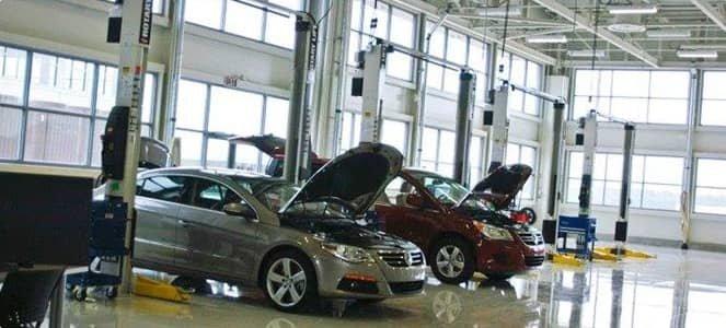 Reeves Volkswagen Volkswagen Dealer In Tampa Fl