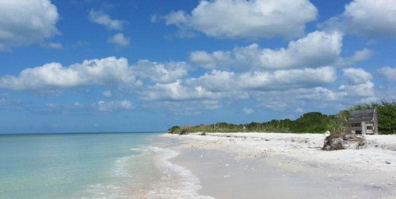 Honeymoon Island Beach