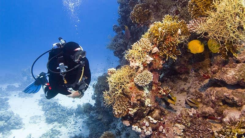 Scuba Diver Driving in Tank