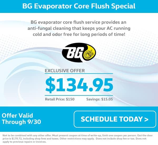 VW Evaporator Core Flush Special
