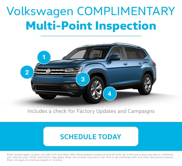 VW Multi-Point Inspection