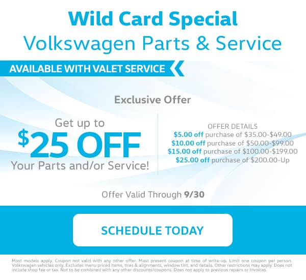 Reeves VW Wildcard Special