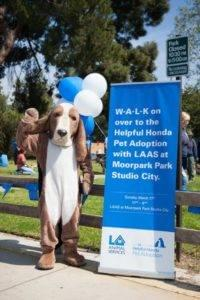 Helpful Honda Pet Adoptions