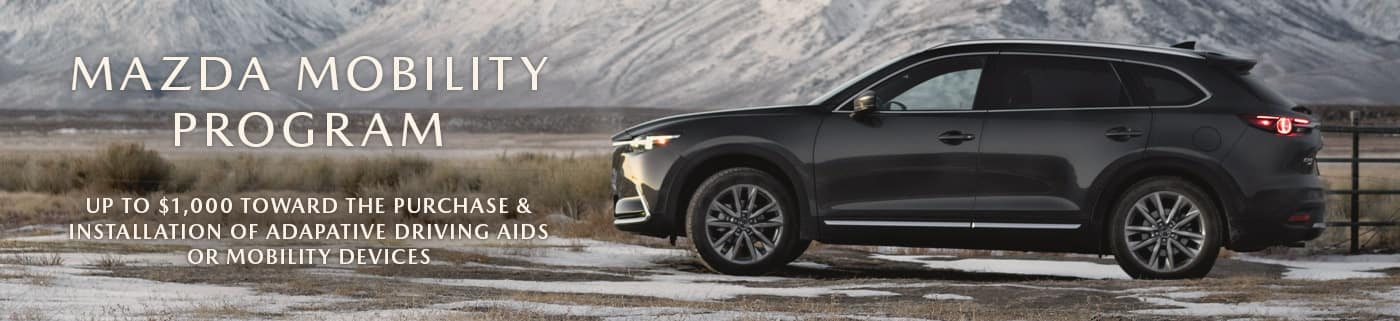 On the right sits a gray 2019 Mazda CX-9 driver's side view in a valley with snowy mountains and foliage in the background. On the left are the words