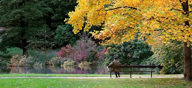 Downers Grove Parks