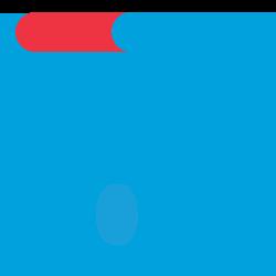 CarGurus2021