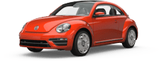 model-beetle